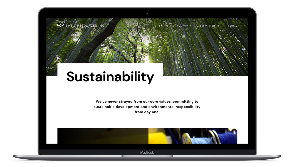 Basic resources custom web design on laptop